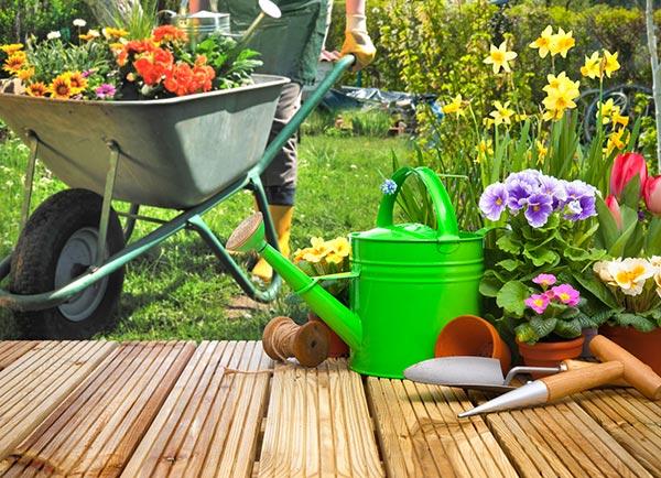 3pl_lawn_garden